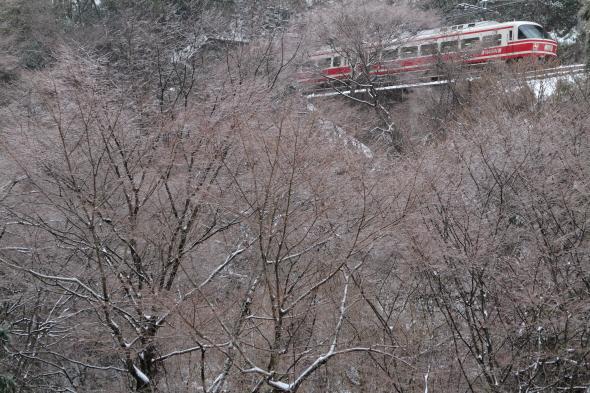 2014/2/8 南海高野線 紀伊神谷~極楽橋