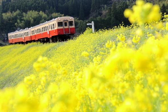 2010年3月下旬 小湊鉄道 上総大久保