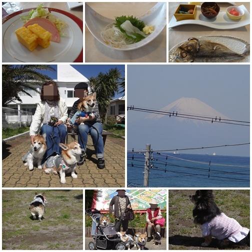 20130408 最終日