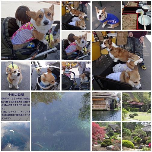 20130512 忍野にて