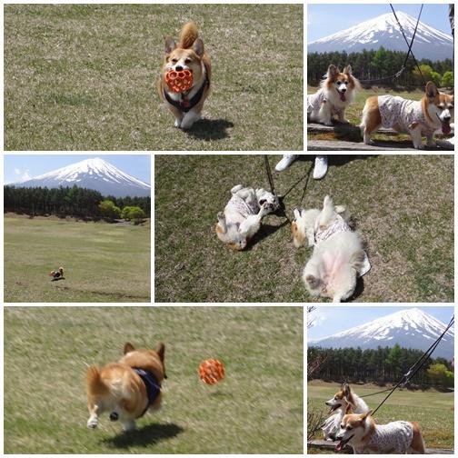 20130513 富士山