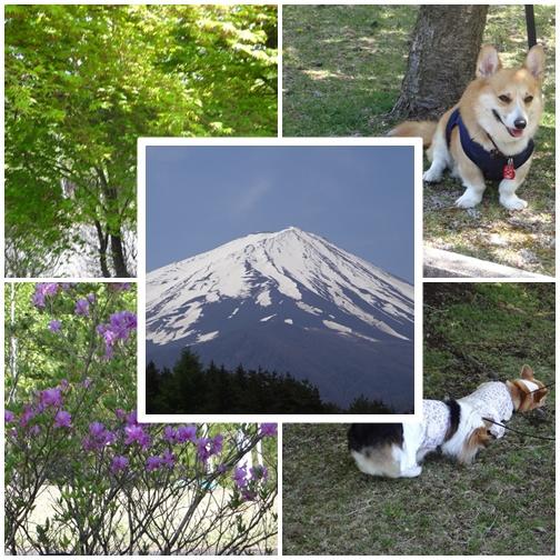 20130513 富士山2