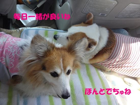 20130706 レジーナ那須 (15)