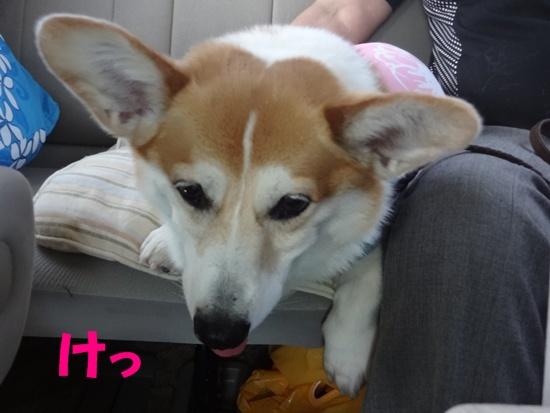 20130706 レジーナ那須 (16)