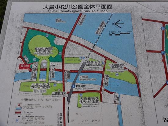 20130908 お祭りDSC03314
