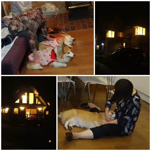 20130914 お部屋でまったり