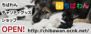 chibawanshop_320x120.jpg
