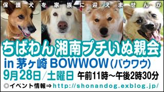 chigasaki8_320x180.jpg