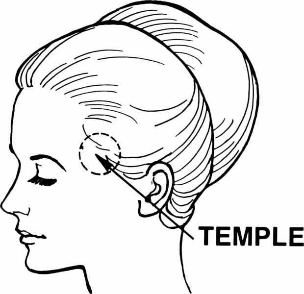 620px-Temple_(anatomy)_(PSF).png