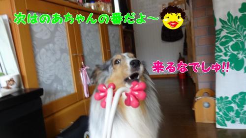 003_convert_20130511102356.jpg