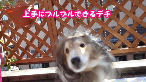 003_convert_20131105154307.jpg
