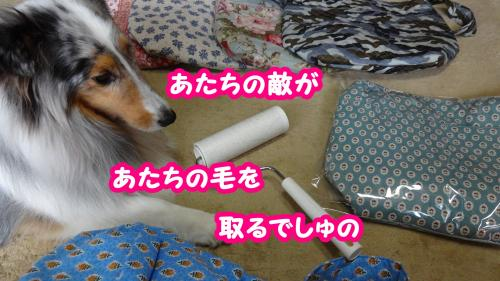 004_convert_20130614144431.jpg