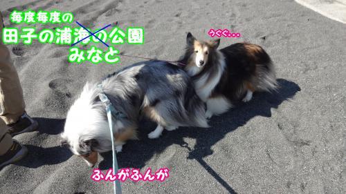 004_convert_20131027144201.jpg