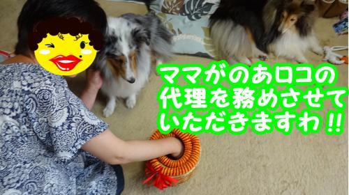 009_convert_20130604182252.jpg