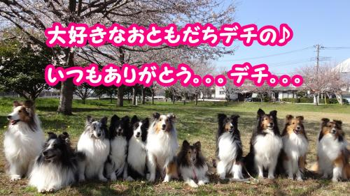 032_convert_20130530075723.jpg