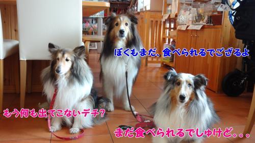 045_convert_20130425204753.jpg