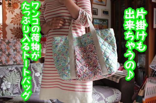 045_convert_20130601081651.jpg