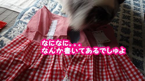 049_convert_20130807070418.jpg