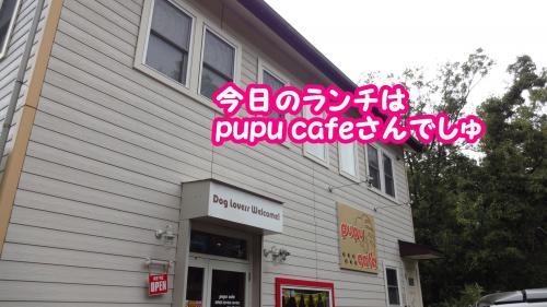 072_convert_20131008174258.jpg