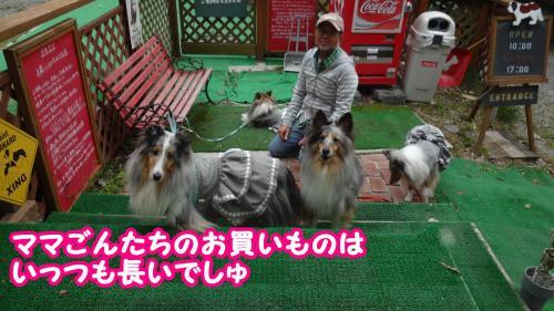 086_convert_20131025091515.jpg