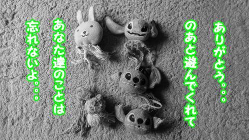093_convert_20130524112118.jpg