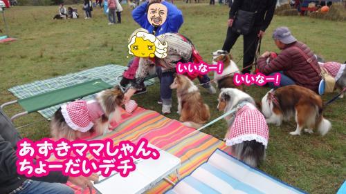 161_convert_20131101104446.jpg