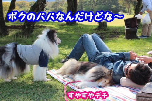171_convert_20131016141754.jpg