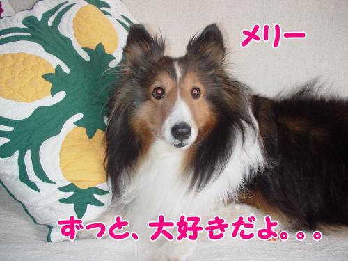 繝舌Λ縺ィ繝。繝ェ繝シ+014_convert_20130514152138