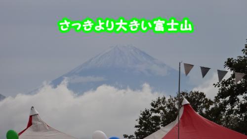 202_convert_20131101104924.jpg