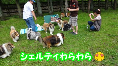 302_convert_20130612202408.jpg