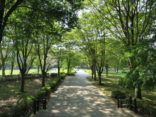 いがしら陽だまり亭(井頭公園)
