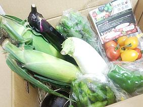 炭野菜20130730
