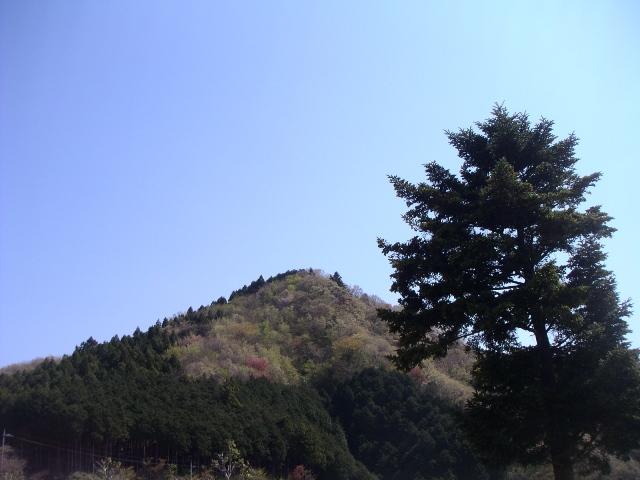 T0582.jpg