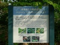 薬用植物指導センター
