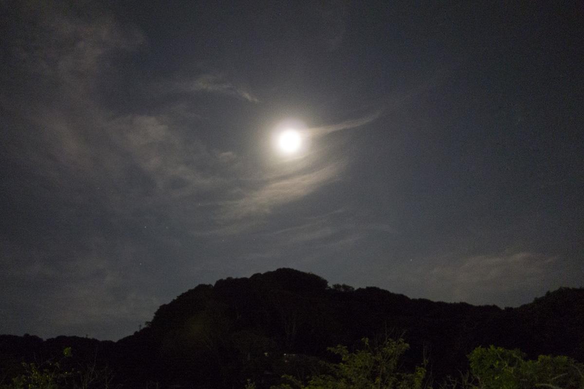 0721_2013-12.jpg