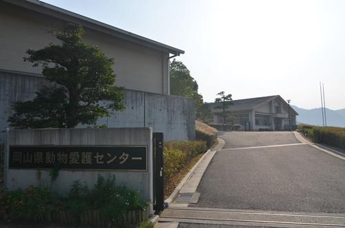 愛護センター1
