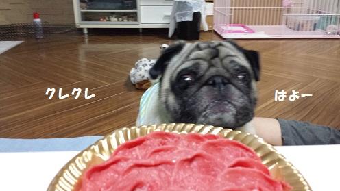 お肉   3