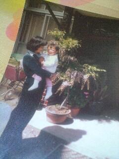 母とわたしと藤