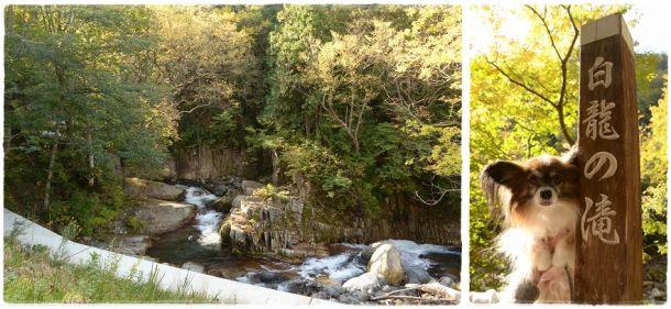 12白龍の滝