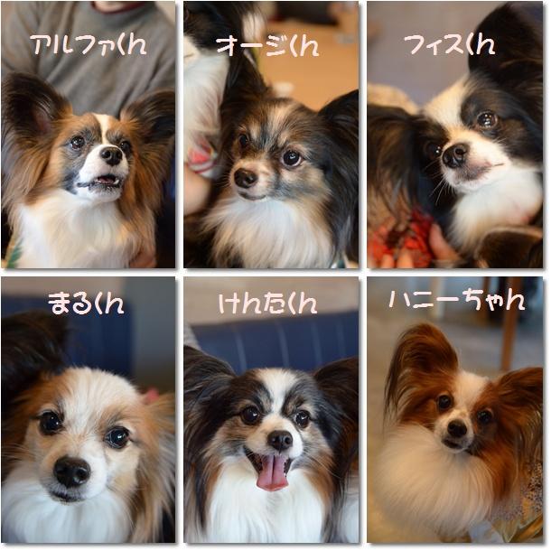 10お友達3
