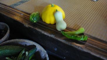 お野菜色々