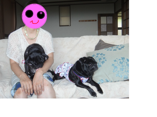 snap_purunosuke_20139682849.jpg