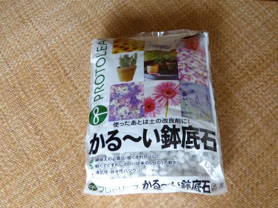 ぴょん子ファーム130911_04