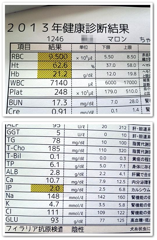 DSC_0327-vert.jpg