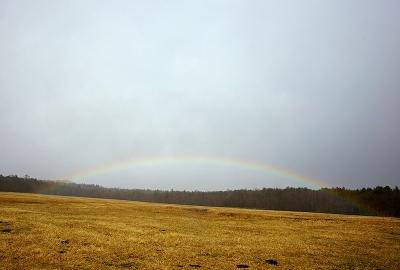 rainbow131210_02.jpg