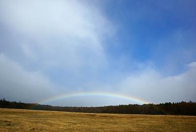 rainbow131210_03.jpg