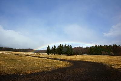 rainbow131210_07.jpg