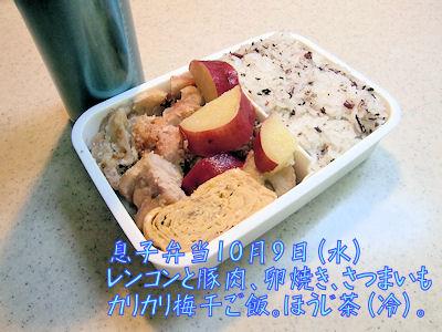 お弁当 プラス カロリーメイト2箱