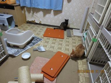 2013.09.08-5 yuka & yuki