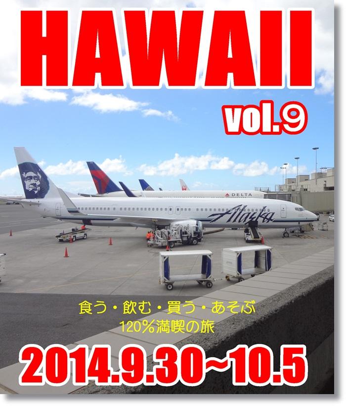 ホノルル国際空港DSC04834